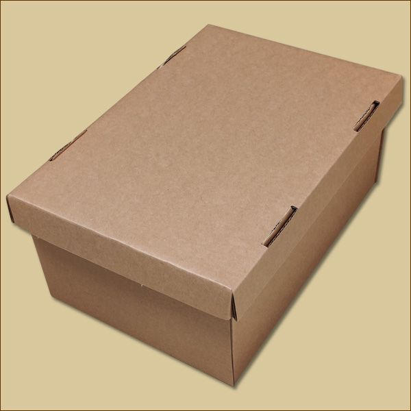 Faltschachtel 290 x 195 x 130 mm Versandschachtel Deckel + Boden