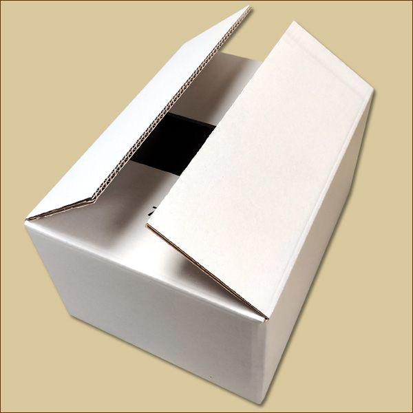 Faltkarton 380 x 280 x 190 mm Versandkarton ZWEIWELLIG WEISS